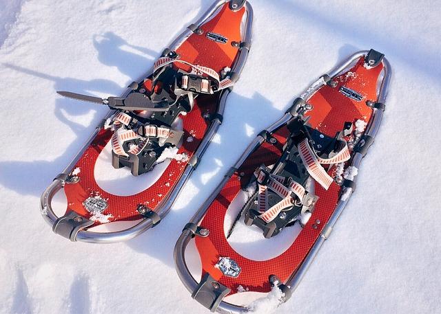 снегоходки модели